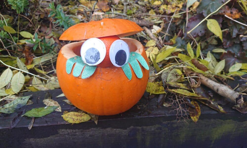 Bert Pumpkin 241020