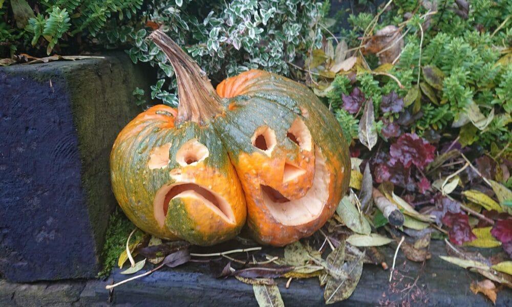 Sad and Happy Pumpkin 241020