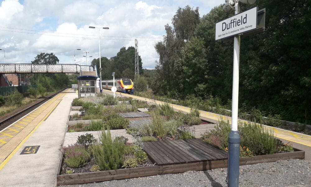 Station gardens and train