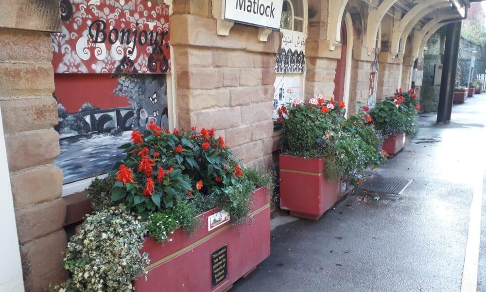 Matlock planters