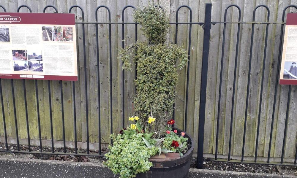 Attenborough topiary
