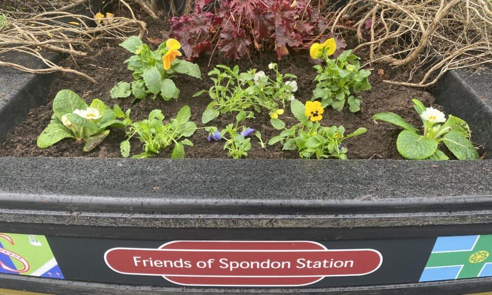 Friends of Spondon Station Planter