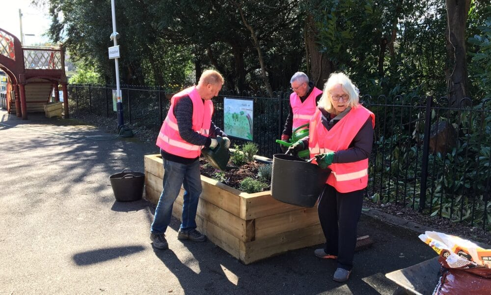 Adopters planting Bee Friendly Planters