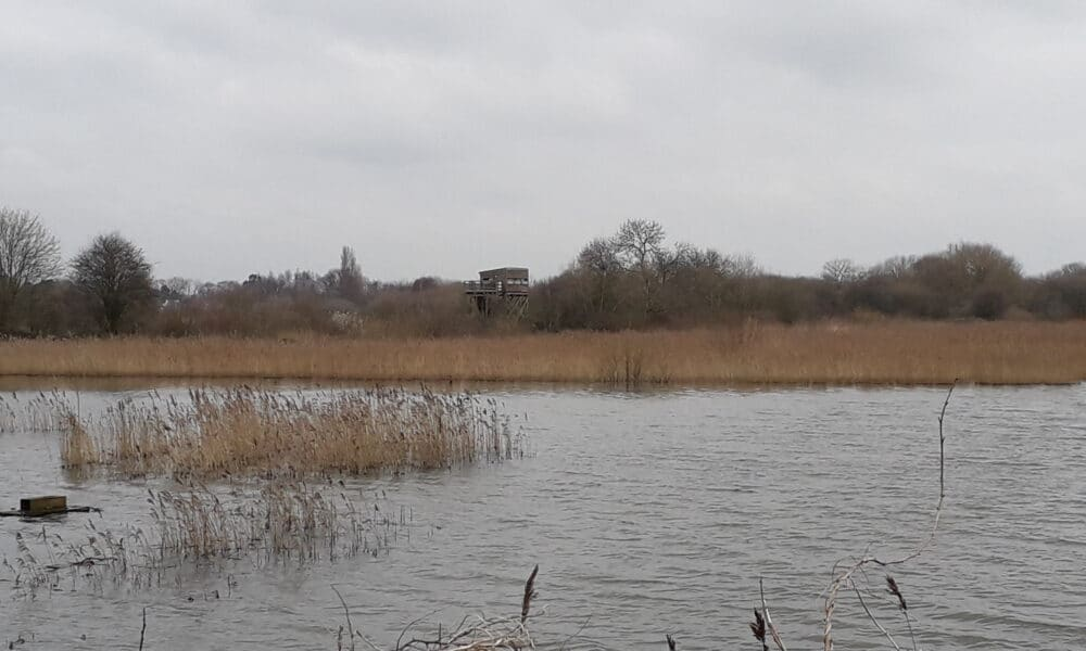 Nature reserve view