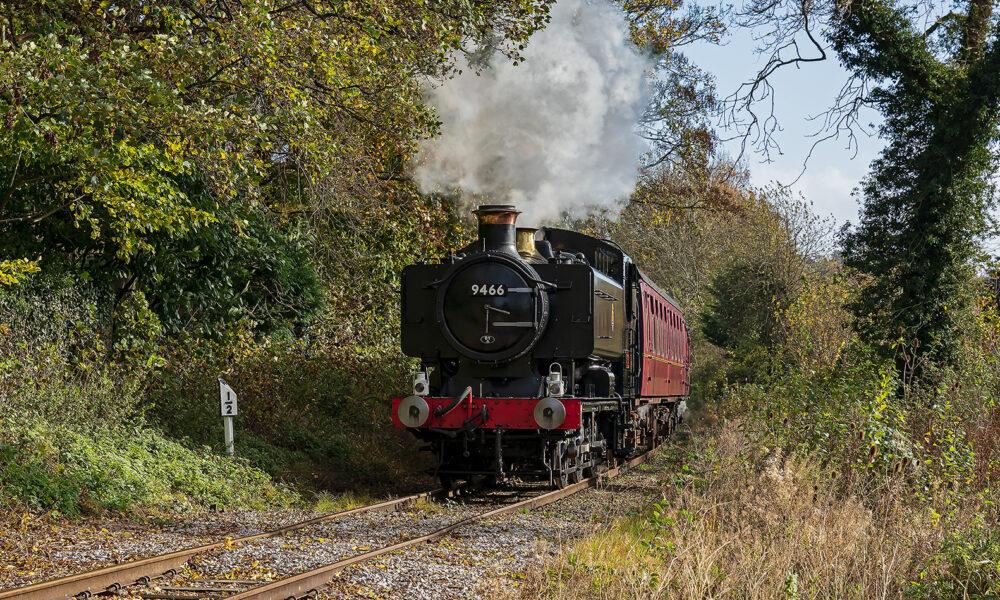 EVR Steam train