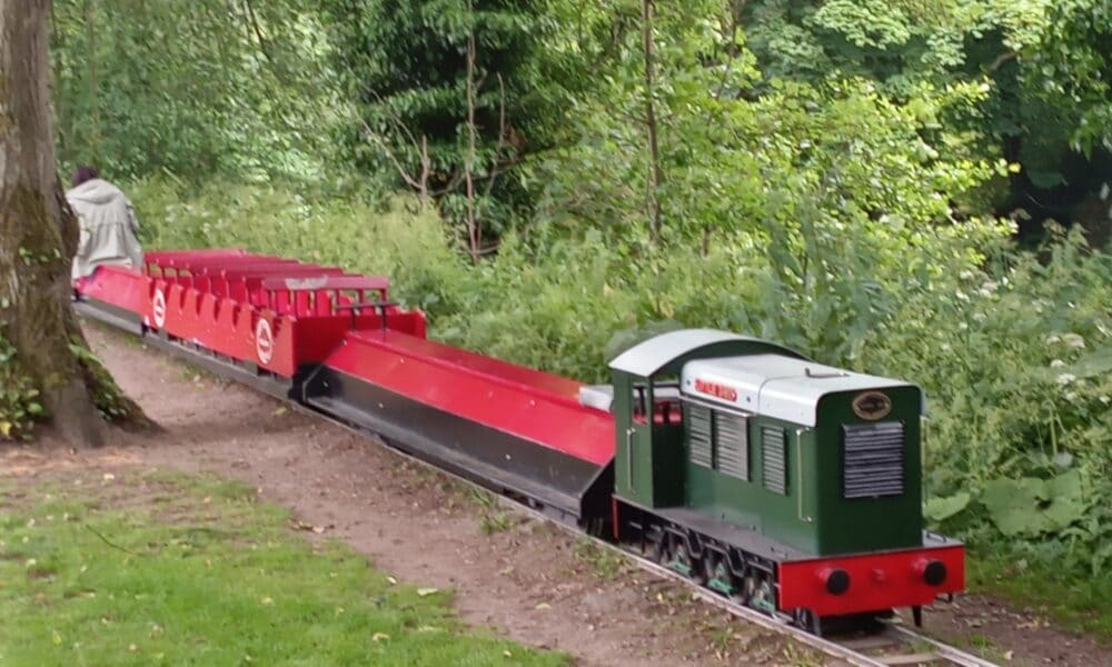 Little David Train