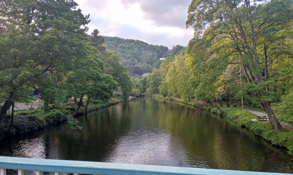 River from Derwent Gardens bridge